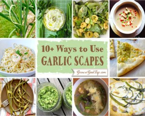 10+ Ways To Use Garlic Scapes