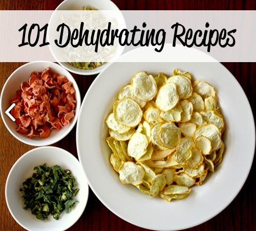 101 Dehydrating Recipes