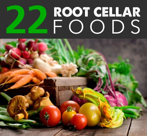 22 Foods You Can Store In Root Cellars - Homestead & Survival