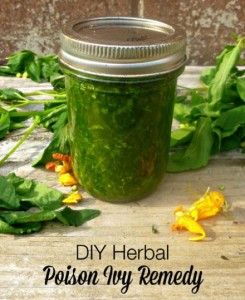 Herbal DIY Poison Ivy Remedy