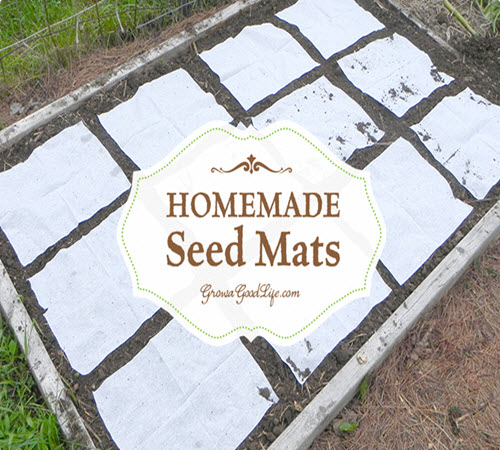 Homemade Seed Mats or Seed Tapes