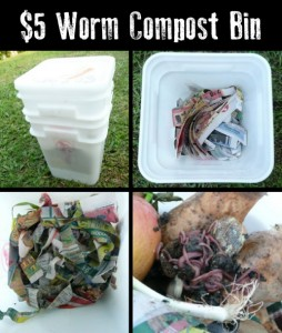 How To Make A Worm Compost Bin For Less Than $5