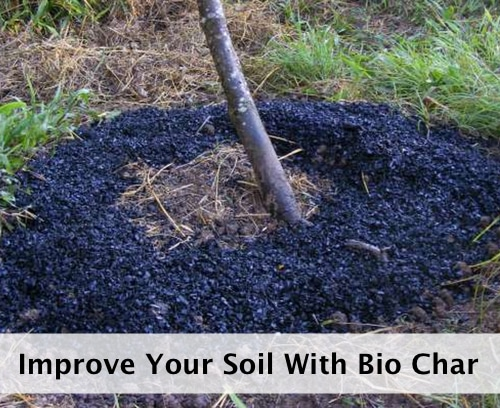 How-To-Make-Bio-Char-To-Improve-Your-Soil