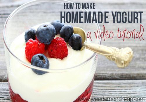 How-To-Make-Homemade-Yogurt