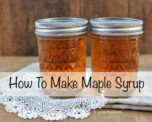 How-To-Make-Maple-Syrup