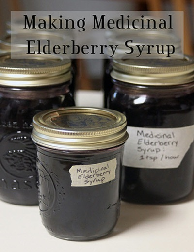 How To Make Medicinal Elderberry Syrup