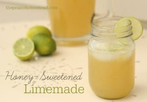 How To Make Naturally Sweetened Lemonade (Or Limeade!)
