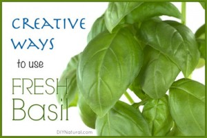 How To Use Fresh Basil In Four Surprising Ways
