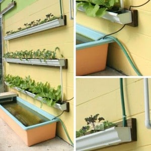 How To Make Your Own Rain Gutter Garden