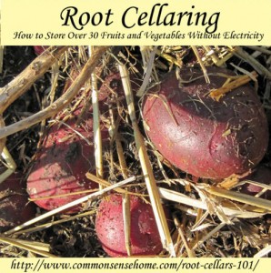 Root Cellaring: How To Store Over 30 Fruits & Vegetables Without Electricity