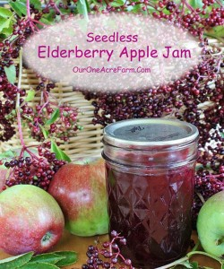 Seedless Elderberry And Apple Jam