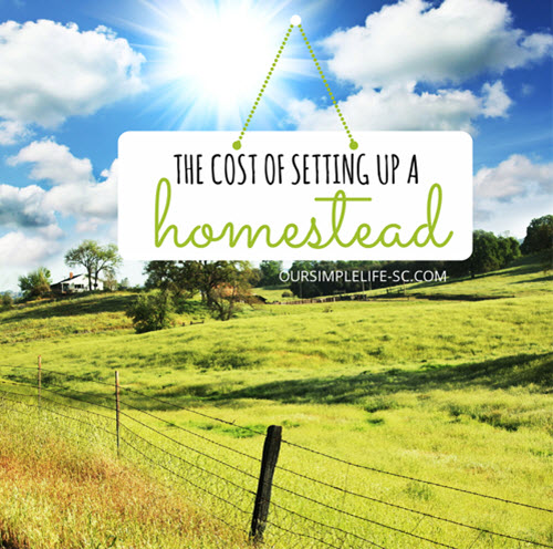 The-Cost-Of-Setting-Up-A-Homestead