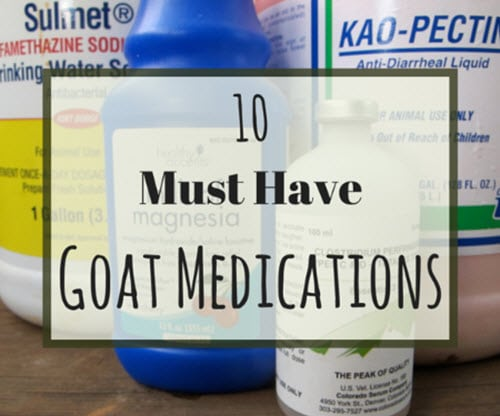 10-Must-Have-Goat-Medications