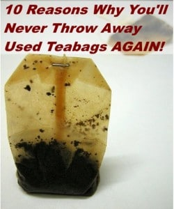 10 Reasons Why You'll Never Throw Away Used Tea Bags Again
