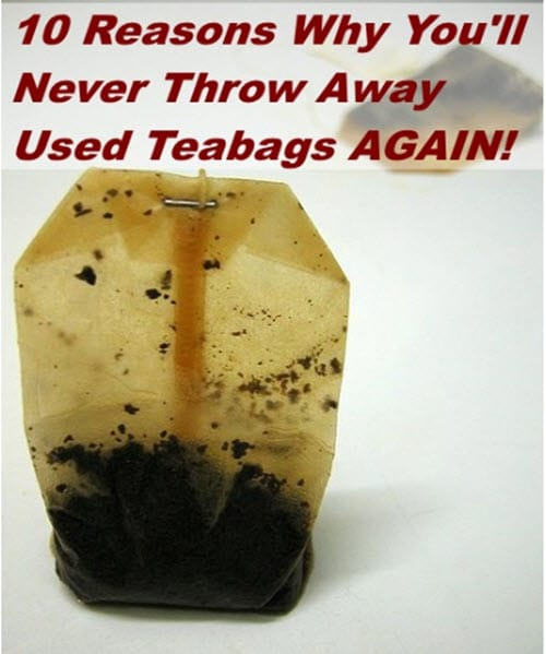 10-Reasons-Why-You-Will-Never-Throw-Away-Used-Tea-Bags-Again