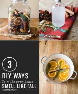 3 Easy DIY Ways To Make Your Home Smell Good – Like Fall