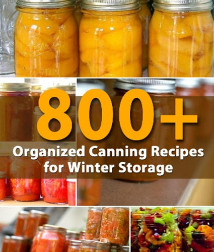 800-Organized Canning-Recipes