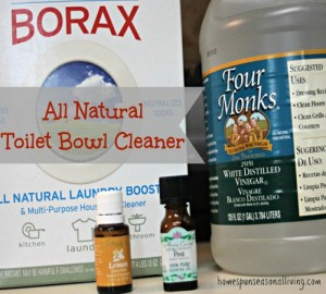 All Natural Toilet Bowl Cleaner