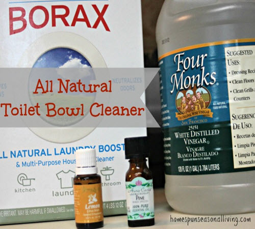 All-Natural-Toilet-Bowl-Cleaner