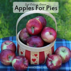 Best Apples For Pies