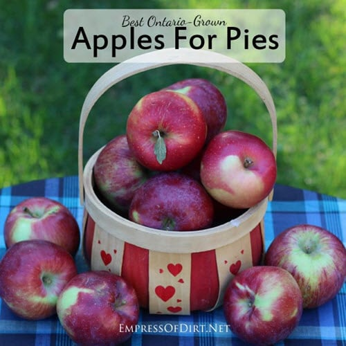 Best-Apples-For-Pies