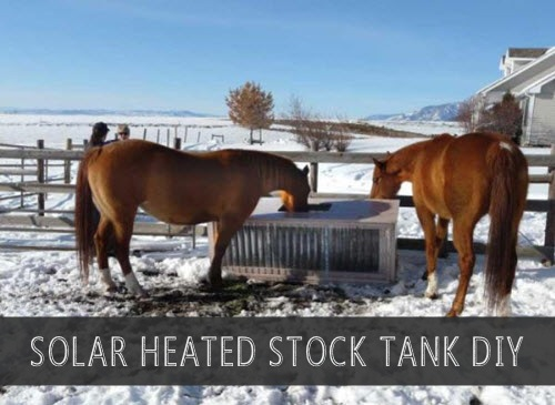 Build-A-Solar-Heated-Stock-Tank