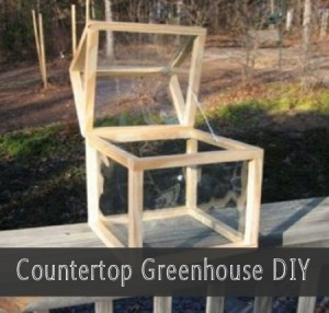 How To Build A Countertop Greenhouse