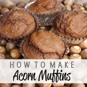How To Make Acorn Muffins