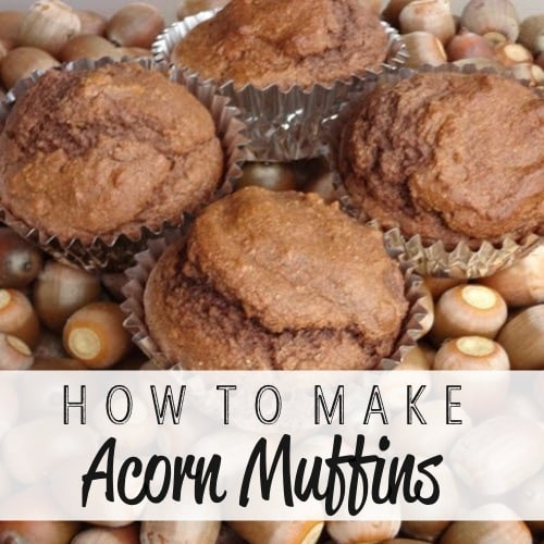 How-To-Make-Acorn-Muffins