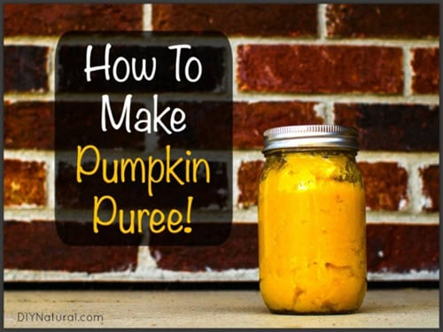 How To Make & Preserve Pumpkin Puree
