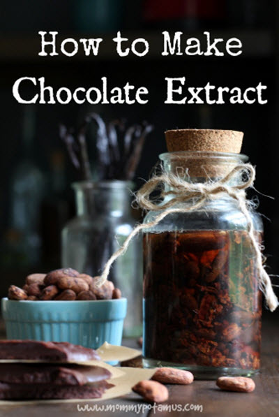 How-To-Make-Chocolate-Extract