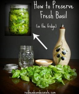How To Preserve Fresh Basil In The Refrigerator For One Year