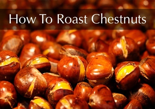 How To Roast Chestnuts Homestead Amp Survival