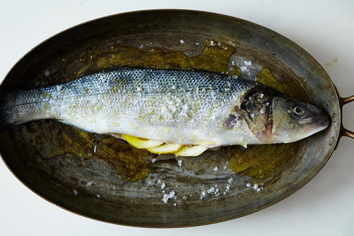 How-To-Scale-And-Gut-A-Fish