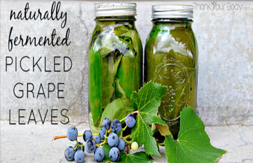 Naturally-Fermented-Pickled-Grape-Leaves