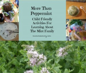 Peppermint Uses | Activities For Kids To Learn About The Mint Family