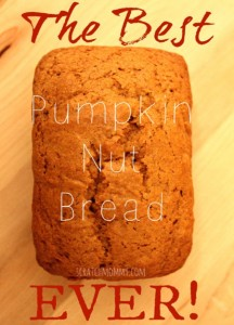 The Best Pumpkin Nut Bread Ever