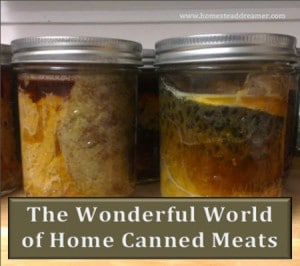 The Wonderful World Of Home Canned Meats