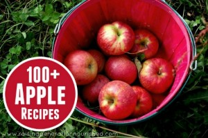 100+ Apple Recipes