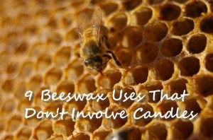 9 Beeswax Uses That Don't Involve Candles