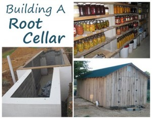 Building A Root Cellar Tutorial