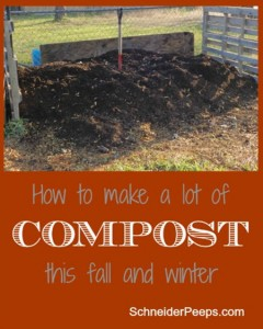 Composting In Winter Guide