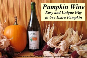 How-To-Make-Pumpkin-Wine