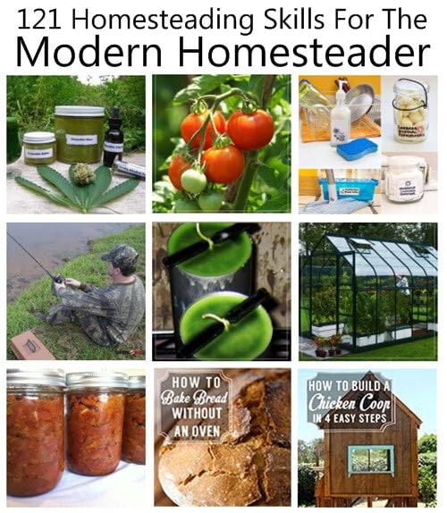 121 Homesteading Skills For the Modern Homesteader