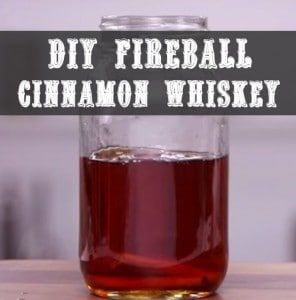 DIY Fireball Cinnamon Whiskey