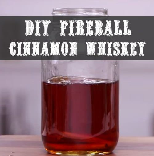 diy-fireball-cinnamon-whiskey