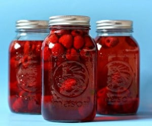 Homemade Raspberry Vinegar Recipe
