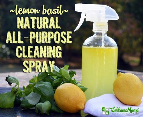 lemon-basil-natural-cleaning-spray