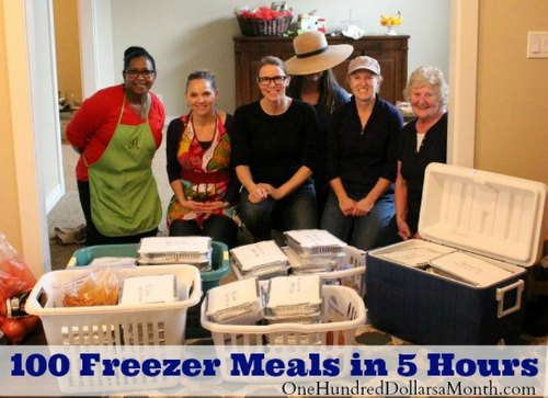 100-freezer-meals