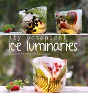 DIY Botanical Ice Luminaries